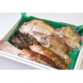 瀬戸内鮮魚セット