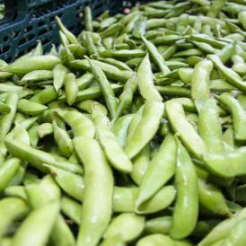 極うま枝豆