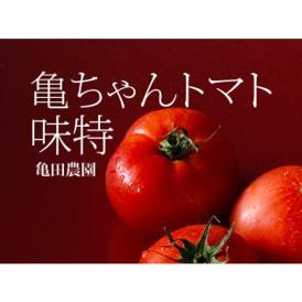 亀ちゃんトマト 味特