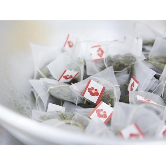 椿茶 茶筒 ギフト02