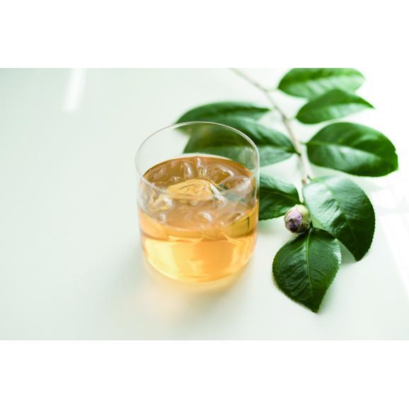 椿茶 茶筒 ギフト03