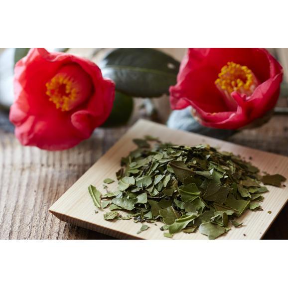 椿茶 茶筒 ギフト04