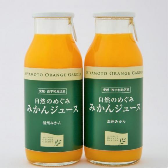 自然のめぐみ みかんジュース 小瓶180ml×12本01