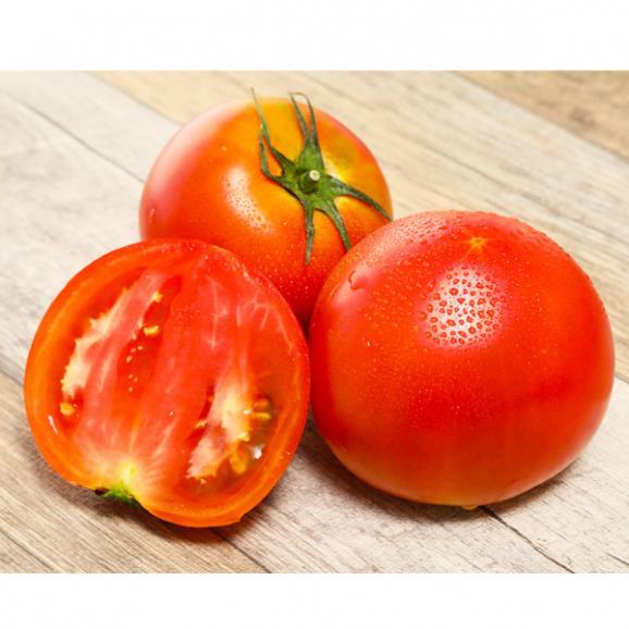 完熟トマト【アップルスター】01