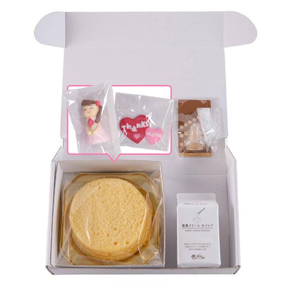 【送料込み】母の日 ケーキキット02