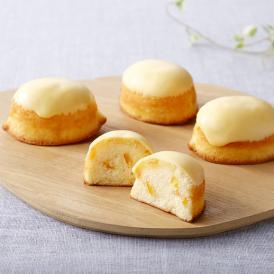 南国で育ったレモンをふんだんに使ったとっておきのレモンケーキ。