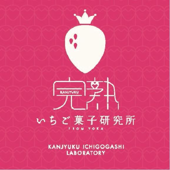 完熟いちごジェラート(ストロベリー・チーズケーキ)06