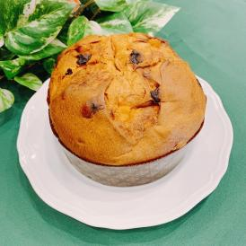 【イタリアのクリスマスケーキ】パネトーネ 【ビチェリン】