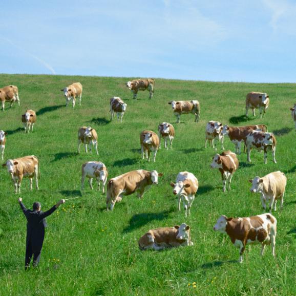 フランス牛と12種の干し野菜で作ったカレー【3セット】06