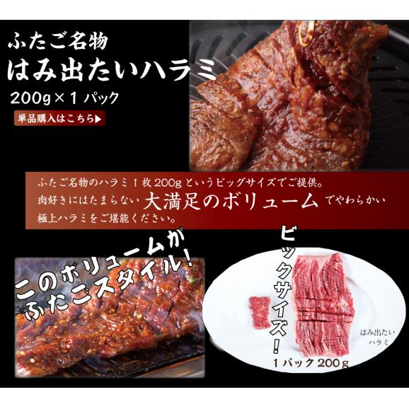 【送料無料】ふたごの極上焼肉PLUS 合計6品セット04