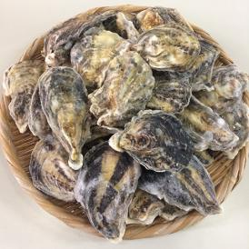 冷凍牡蠣の缶焼きセット 2kg(瀬戸内海産)