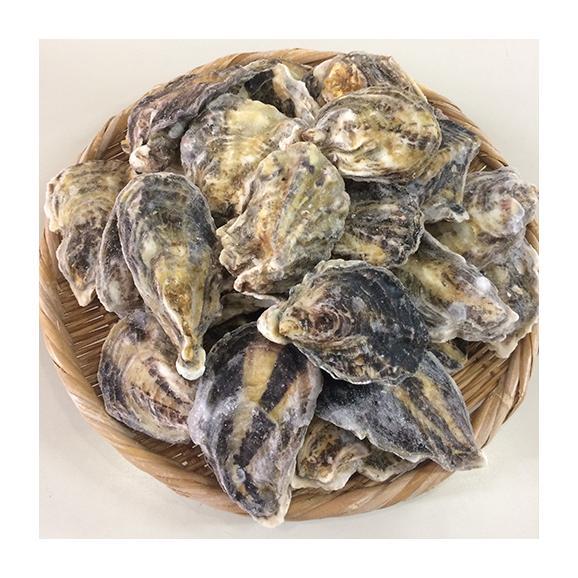 冷凍牡蠣の缶焼きセット2kg(瀬戸内海産)【春のみるく牡蠣:期間限定】01