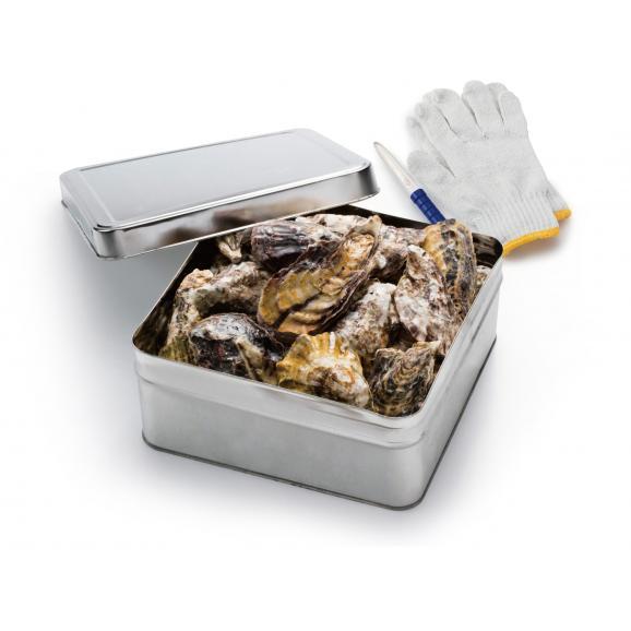 冷凍牡蠣の缶焼きセット2kg(瀬戸内海産)【春のみるく牡蠣:期間限定】04