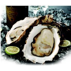 牡蠣のトップコンシェルジュおすすめ旬の生牡蠣のセット