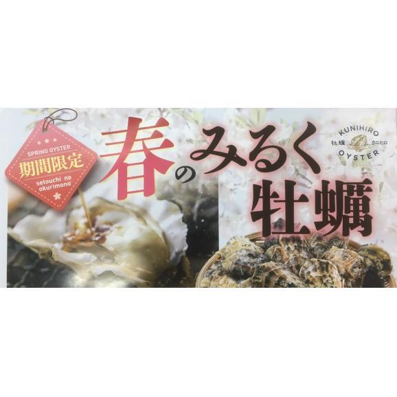広島県産かきむき身1kg加熱用【春のみるく牡蠣:期間限定】02