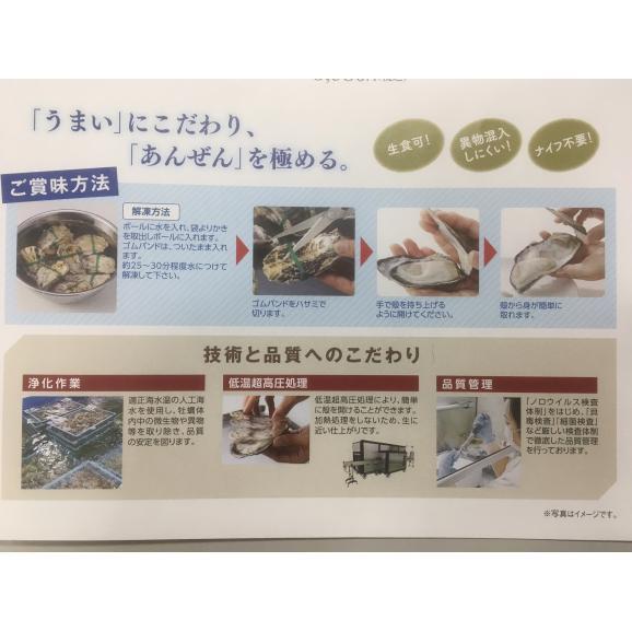 スマートオイスターフレッシュ12個(6個×2袋)【春のみるく牡蠣:期間限定】02