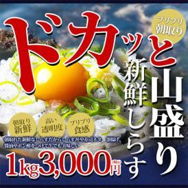 冷凍生シラス1kg(瀬戸内海産)