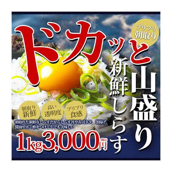 冷凍生シラス1kg(瀬戸内海産)01