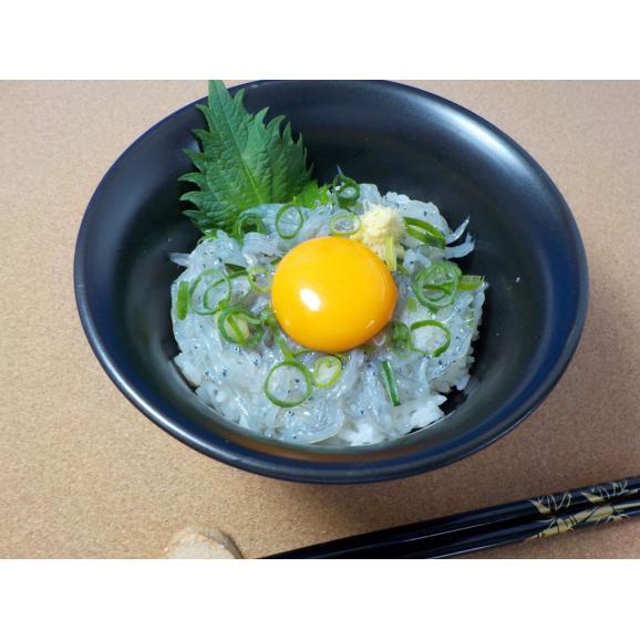 冷凍生シラス1kg(瀬戸内海産)02