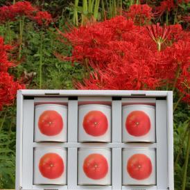 瀬戸内国際芸術祭2016モデル 香川県産小原紅みかん缶詰6缶ギフト これからのお歳暮シーズンにいかがですか?おすすめのお取り寄せグルメです。