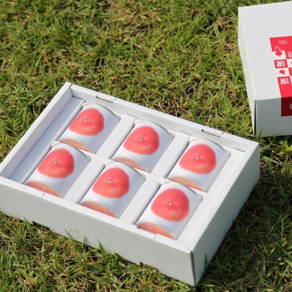 瀬戸内国際芸術祭2016モデル 香川県産小原紅みかん缶詰6缶ギフト これからのお歳暮シーズンにいかがですか?おすすめのお取り寄せグルメです。02