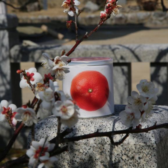 瀬戸内国際芸術祭2016モデル 香川県産小原紅みかん缶詰6缶ギフト これからのお歳暮シーズンにいかがですか?おすすめのお取り寄せグルメです。03