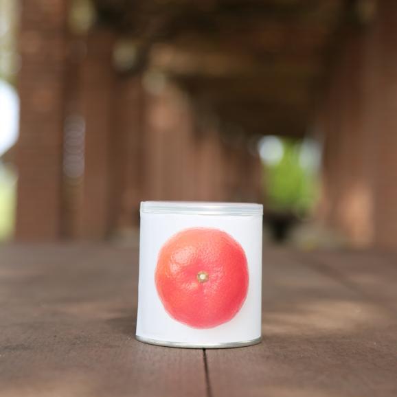 瀬戸内国際芸術祭2016モデル 香川県産小原紅みかん缶詰6缶ギフト これからのお歳暮シーズンにいかがですか?おすすめのお取り寄せグルメです。05