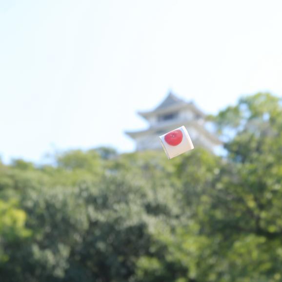 瀬戸内国際芸術祭2016モデル 香川県産小原紅みかん缶詰6缶ギフト これからのお歳暮シーズンにいかがですか?おすすめのお取り寄せグルメです。06
