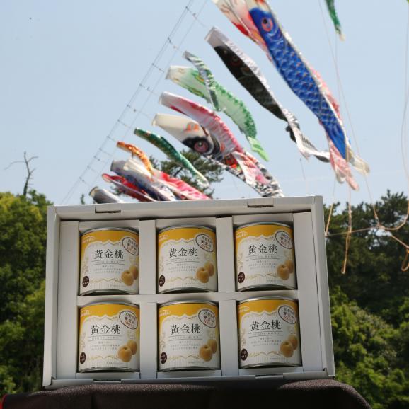 山形県産黄金桃缶詰一口サイズ 6缶ギフト さぬきかんづめだけど、秋田県由利本荘市にも工場があります。 お中元 お歳暮 菅内閣が発足しましたー!!経済もっともっと上向きになぁれ~ いっぺぇ売れてけれ~02