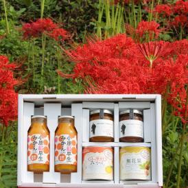 香川県産品中ギフト 小原紅みかんの缶詰 + ジャム + ジュース & 無花果の缶詰 + ジャム 税込3,500円でこの贅沢!変わったモノ探していませんか?お取り寄せグルメは喜ばれます。おすすめします!