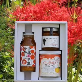 香川県産小原紅みかん小ギフト 缶詰 + ジャム + ジュース 税込2,000円でこの贅沢!変わったモノ探していませんか?お歳暮でお取り寄せグルメは喜ばれます。おすすめします!