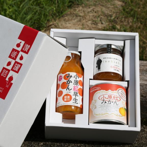 香川県産小原紅みかん小ギフト 缶詰+ジャム+ジュース 変わったモノ探していませんか? おすすめ お中元 お歳暮 菅内閣が発足しましたー!!経済もっともっと上向きになぁれ~ いっぺぇ売れてけれ~05