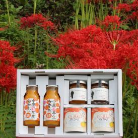 香川県産小原紅みかん中ギフト 缶詰 + ジャム + ジュース 税込3,500円でこの贅沢!変わったモノ探していませんか?お歳暮でお取り寄せグルメは喜ばれます。おすすめします!