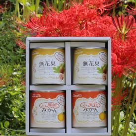 香川県産フルーツ4缶ギフト 小原紅みかんと無花果の缶詰セットです。沢山の人にご覧いただきたいです! お歳暮 お中元 贈答にいかがですか?ぴえん通り越してぱおん!