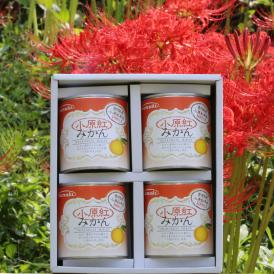香川県オリジナル品種 小原紅みかんの缶詰ギフトです。