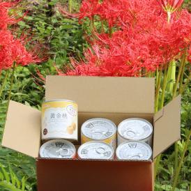 山形県産黄金桃缶詰一口サイズ 茶箱6缶セット さぬきかんづめだけど、秋田県由利本荘市にも工場があります。これからのお歳暮シーズンにお取り寄せグルメとしていかがですか?おすすめですよ~