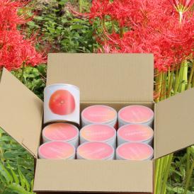 瀬戸内国際芸術祭2016モデル 香川県産小原紅みかん缶詰9缶 茶箱セット これからのお歳暮シーズンにいかがですか?おすすめのお取り寄せグルメです。