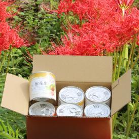 香川県産無花果缶詰 茶箱6缶セット 珍しいお取り寄せグルメとしていかがですか?おすすめします~ お歳暮 お中元 贈答にいかがですか?ぴえん通り越してぱおん!