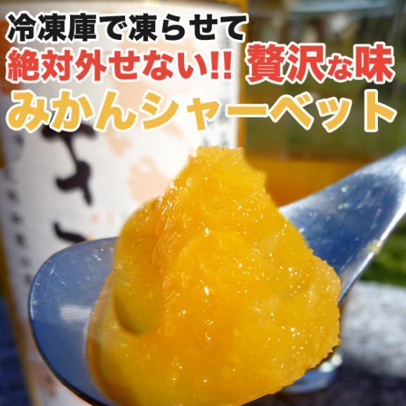 「きわみ みかんジュース」100%ストレート果汁 500ml×3本03