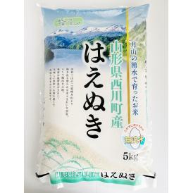 【山形県産 月山の湧水で育ったお米はえぬき】白米 無洗米 5kg 2019(令和元)年産 新米