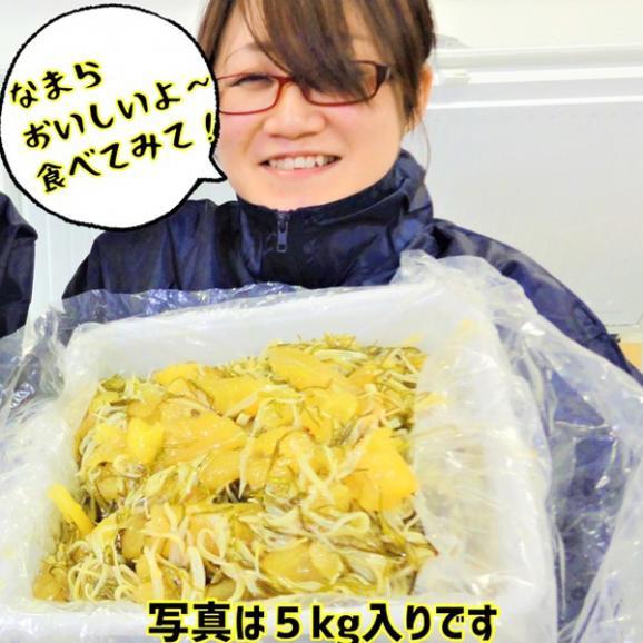 【送料無料】数の子松前漬け 白造り 500g03