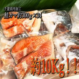「送料無料」 鮭カマ 10kg(300g×34)業務用にも