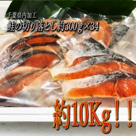 「送料無料」鮭切り落とし 10kg(300g×34)業務用にも