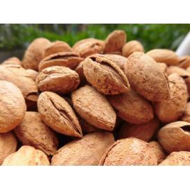添加物不使用 、珍しい殻付きアーモンドほか、人気のナッツ商品を5種類用意しました!