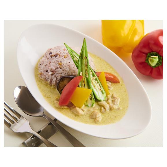 グリーンカレー(冷凍)10個セット Green Curry 10pc02