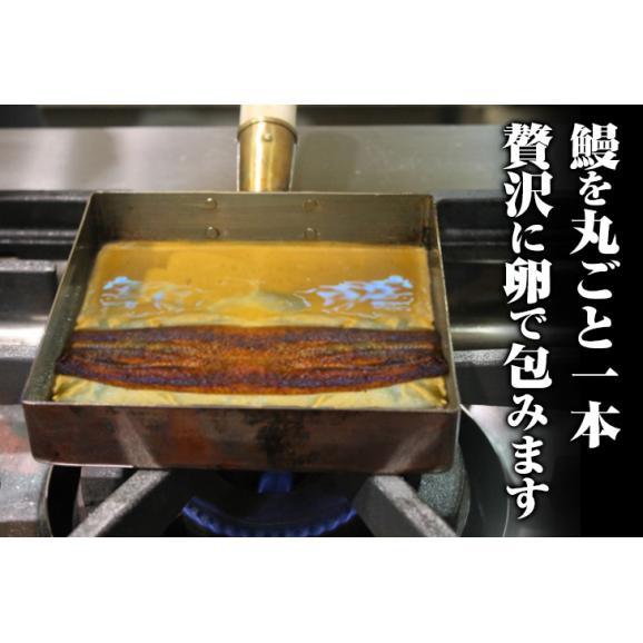 送料無料ー国産うなぎ蒲焼き一尾入り鰻巻き02