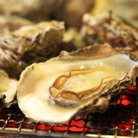 ぎっしり詰まった身をお好みのお料理で...宮城県産殻付き冷凍牡蠣 軍手 牡蠣ナイフ付き