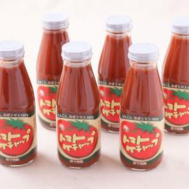 めぐみ会の手作りトマトケチャップ 6本セット