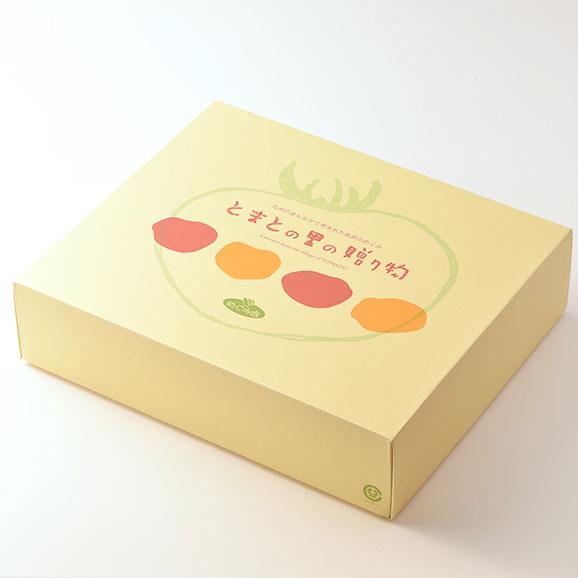【まごころセット】トマトジュース、ケチャップ(385g、270g)、焼肉のたれ、トマバジソース 各1本04