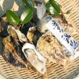 ひと粒牡蠣 殻付き/むき身セット